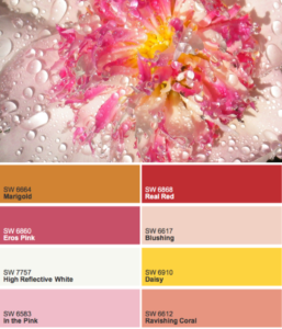color inspiration palette Peony Sherwin Williams Paint Color Sprinkler Repair BlueSkyRain.com